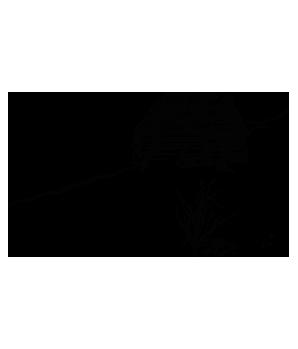 Abbildung: Hütte am verschneiten Berghang