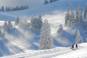 Pärchen beim Gassigehen im verschneiten Naturpark Dobratsch