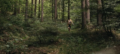 Wandern im Wald_Schönleitn